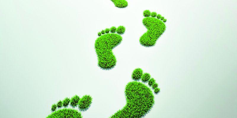 Litz Konfektion Grüner Fußabdruck